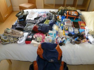 10 must have items for African travel