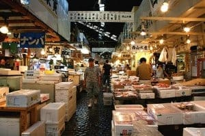 tsukiji fish market tour