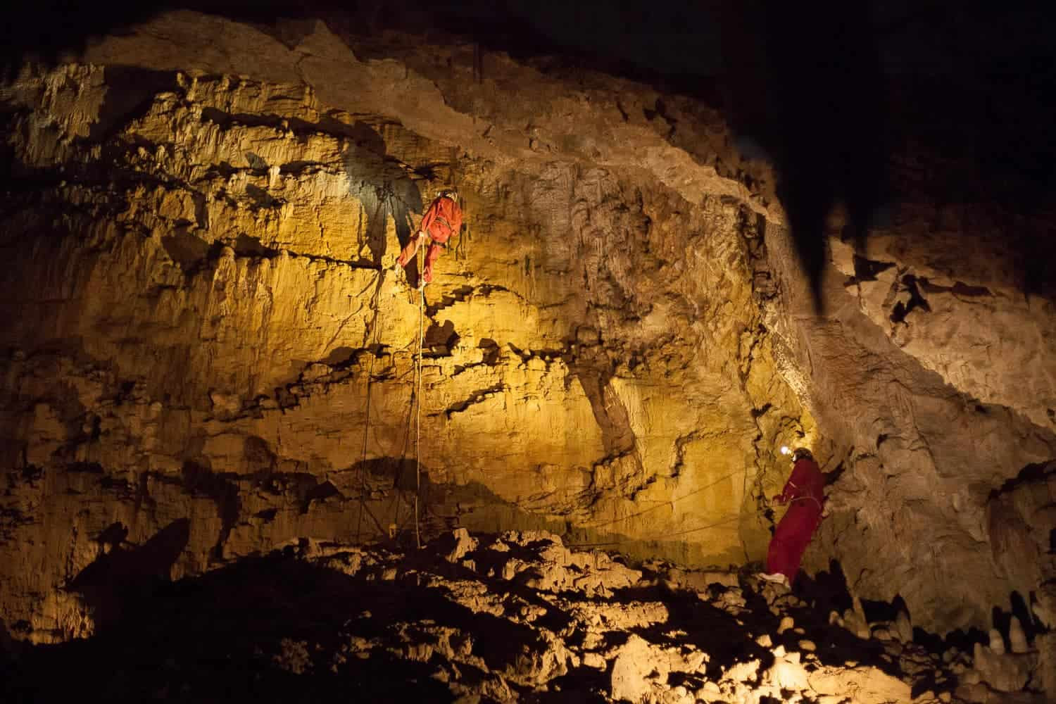Waitomo Cave tours review