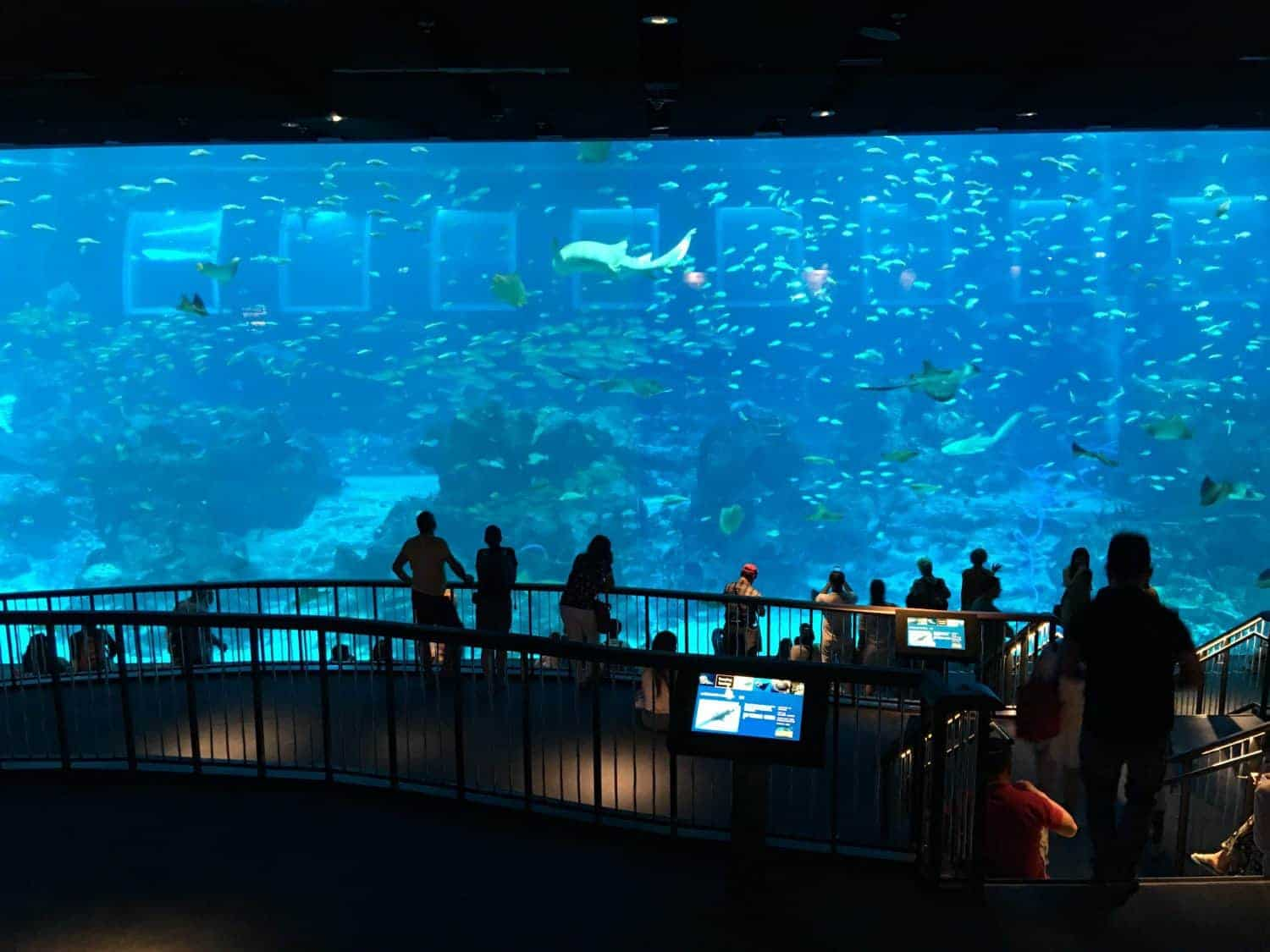 SEA Aquarium Singapore
