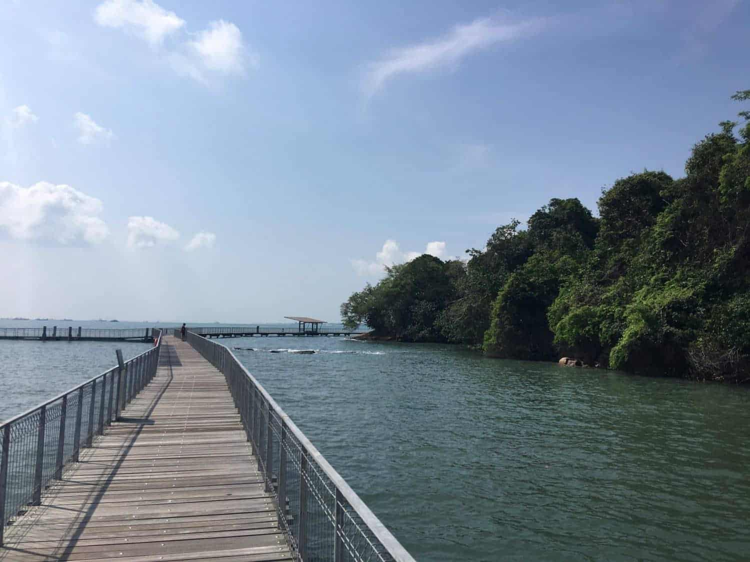 Coastal walk on Pulau Ubin